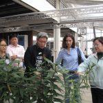 07--農園生產系何韻詩老師解說場內作物耕種情形